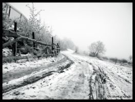 The winter in Ukraine IV by MorrScrolls
