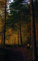 autumn peace by KariLiimatainen