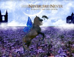 Never Say Never by Camalla