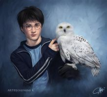 Harry and Hedwig by josephinekazuki