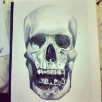 Skull by Joy-Pedler