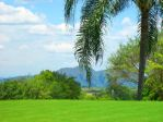 """Paisaje """"tropical"""" by thredith"""