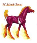 FC Adenah Bennu by apollo22