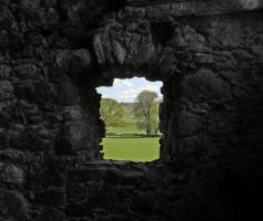 Inside Looking Out by sags