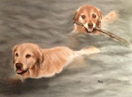 Water dogs II by archiejake
