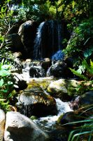 Stream at the Huntington Library by OffDWallNotDRack