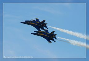 Blue Angels by WeezyBlue