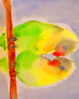 Lovebirds by candybop