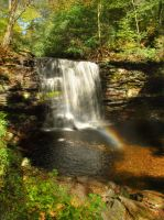 Ricketts Glen State Park 48 by Dracoart-Stock