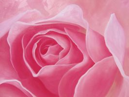 One Big Rose by Silas-Higgle