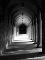 Cloisters by purple-the-cactus