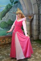 Princess Fantasy Faire Aurora 3 by Anime-Ray