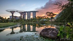 Gardens By The Bay, Singapore by josgoh
