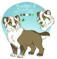 Badger Reff 2013 by Prisma-Colored