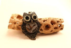 Large Eyed Owl by Sasha251125