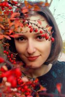 Autumn berries by Lucie-Lilly