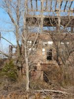 Armour Meat Packing Plant 3 by RonTheTurtleman