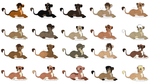 Lion Cub Point Adoptables OPEN by sjsaberfan