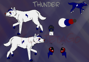 Thunder Reference by Jetago