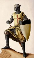 Knight Templar by InfernalFinn