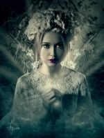 Rise of the Fairy by Lysiere