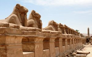 Sphinx's in Luxor by 1photo