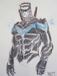 Nightwing commission by Ultrafpc