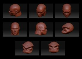 ZBrush Head Studies by Blaze0ne