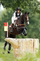 She's An Eventer. by feverpaint