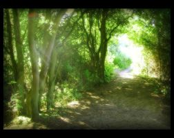 Enchanted Path by Forestina-Fotos