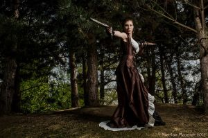 Steampunk corset and dress - 2012 collection' by Esaikha