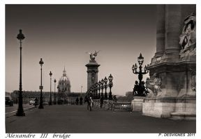 alexandre III bridge by bracketting94