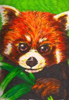 Red Panda by Puppy2388