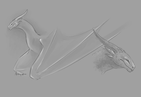 Sketchpage - Dragon by Alithographica