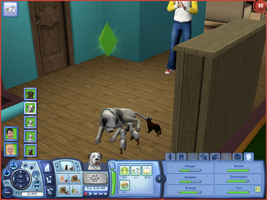 The Sims 3 Puppies! by WildFlower111