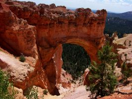 BRYCE ARCH by CorazondeDios