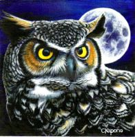 Great Horned owl acrylic by MandarinMoon
