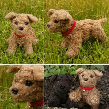 Charlie the (Toy) Poodle by demiveemon