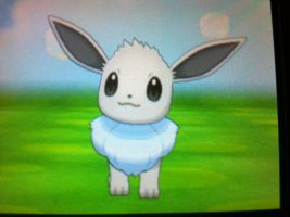 Shiny eevee for trade by LillyKratos