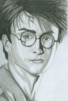 Blast fr. d Past: HarryPotter2 by MarshiMallow