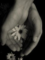 our hands by lavki