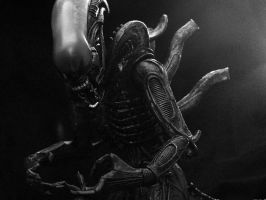 Alien 5 by OmeN2501