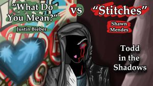 What Do You Mean vs Stitches by TheButterfly