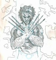 Wolverine for giggles by Samuel-Hain