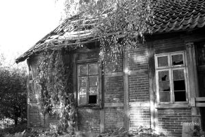 Old Farmhouse 2 by bluesgrass