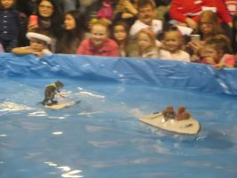 Twiggy the Water Skiing Squirrel (Video links) by Codetski101