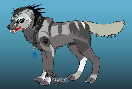 Quazar The Wolf by The-Art-Wolf