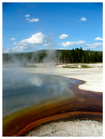 Yellowstone Spring Shades by tezzan