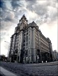 The Liver Building by Allfire