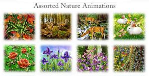 Assorted Nature Animations by flashdo